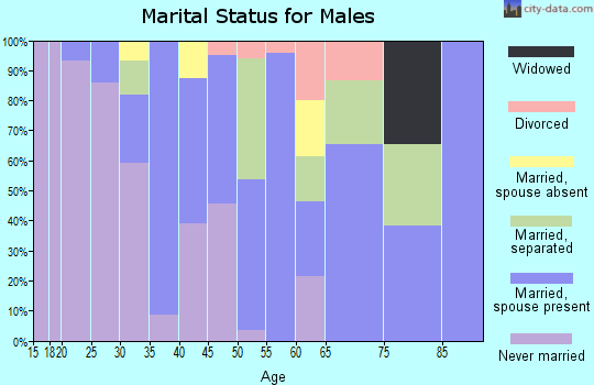 Zip code 95951 marital status for males