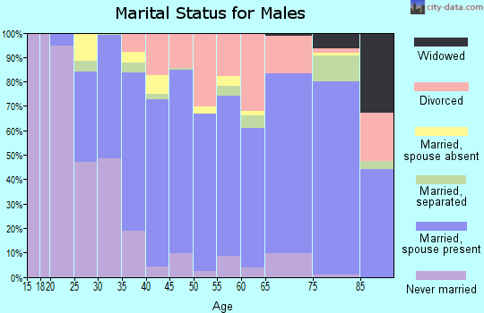 Zip code 95963 marital status for males