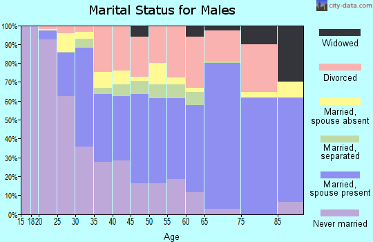 Zip code 95965 marital status for males