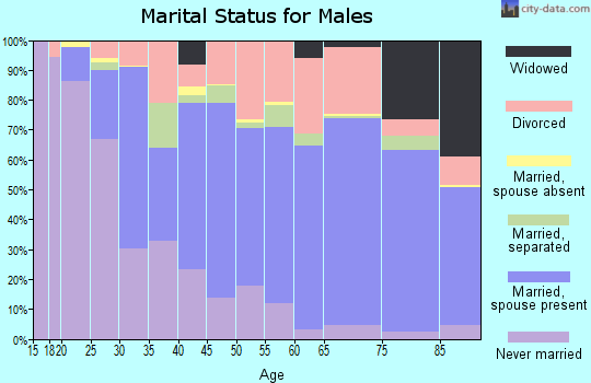 Zip code 95966 marital status for males