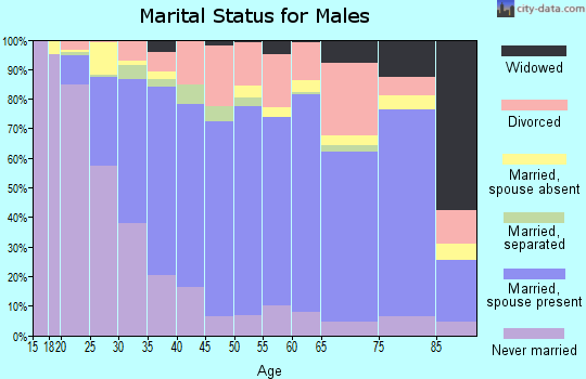Zip code 95991 marital status for males