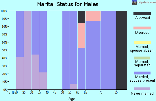 Zip code 96006 marital status for males