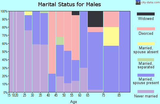 Zip code 96013 marital status for males