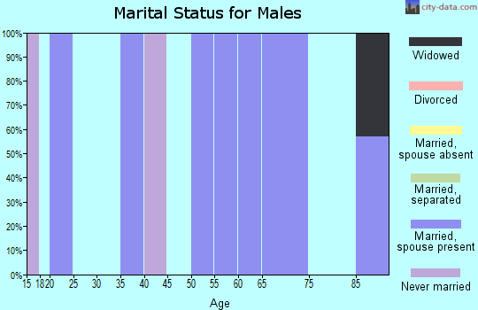 Zip code 96040 marital status for males