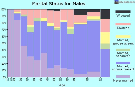 Zip code 96080 marital status for males