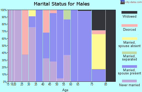 Zip code 96118 marital status for males