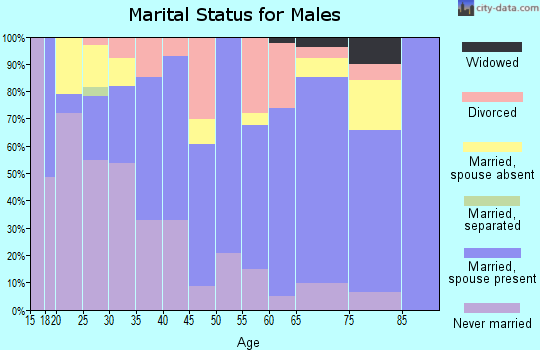 Zip code 96712 marital status for males