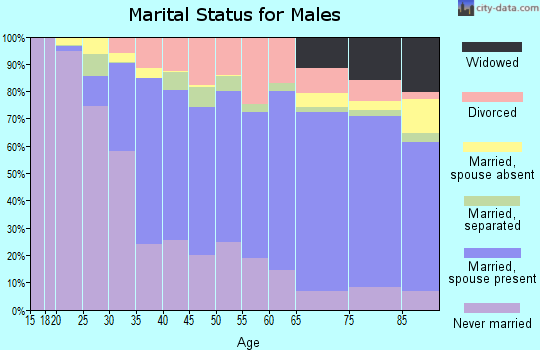 Zip code 96720 marital status for males