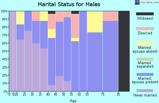 Zip code 96729 marital status for males