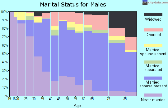 Zip code 96740 marital status for males