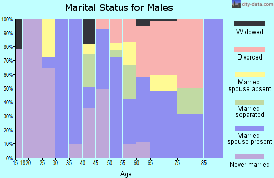 Zip code 96760 marital status for males