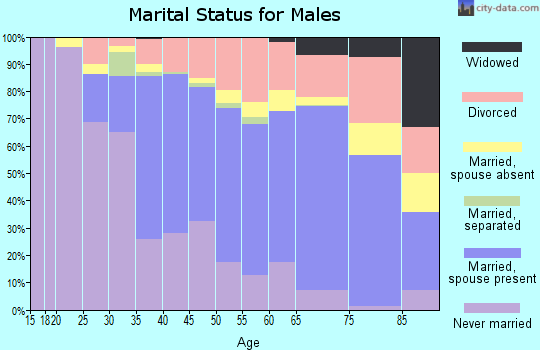 Zip code 96761 marital status for males