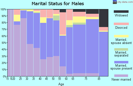 Zip code 96766 marital status for males
