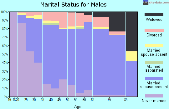 Zip code 97303 marital status for males