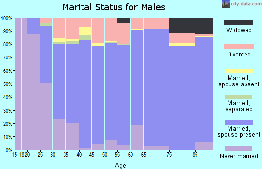Zip code 97306 marital status for males