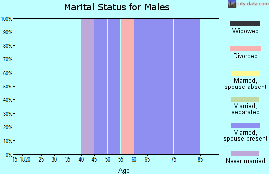Zip code 97357 marital status for males