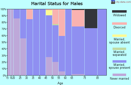 Zip code 97358 marital status for males
