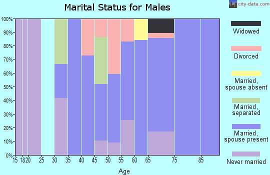 Zip code 97453 marital status for males