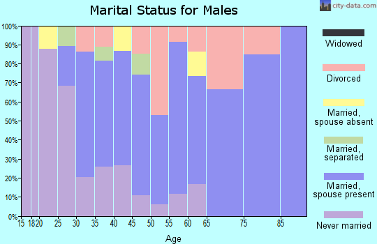 Zip code 97875 marital status for males