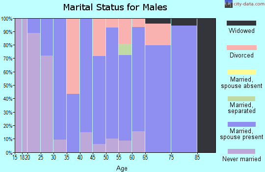 Zip code 97883 marital status for males