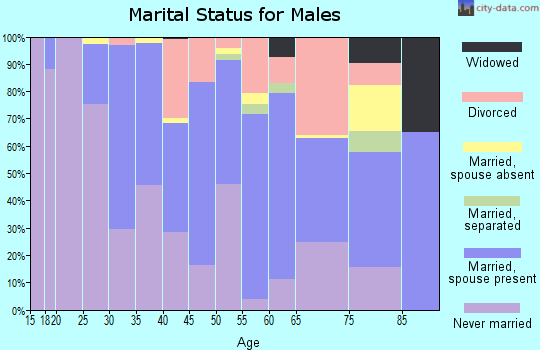 Zip code 98136 marital status for males