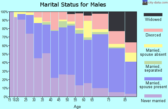 Zip code 98146 marital status for males