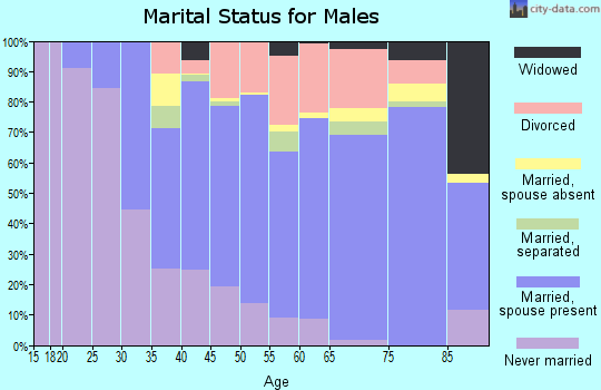 Zip code 98166 marital status for males