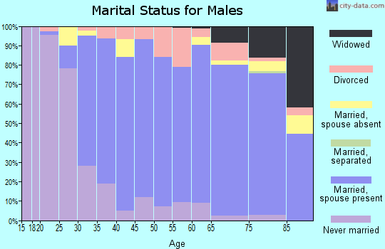 Zip code 98177 marital status for males