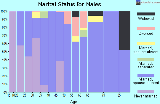 Zip code 98232 marital status for males