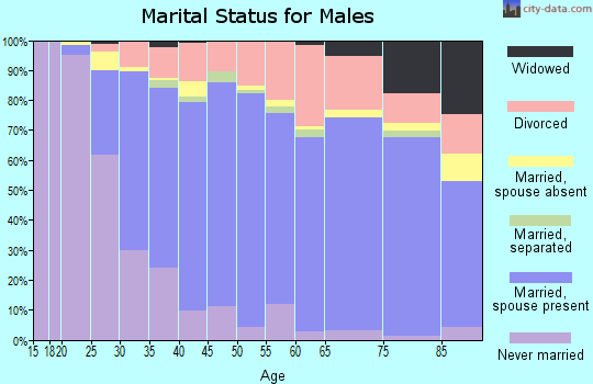 Zip code 98290 marital status for males