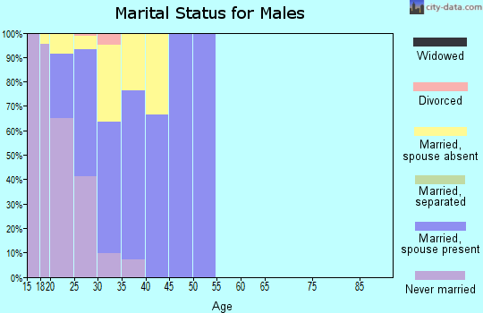 Zip code 98315 marital status for males