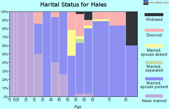Zip code 98342 marital status for males