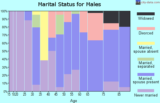 Zip code 98376 marital status for males