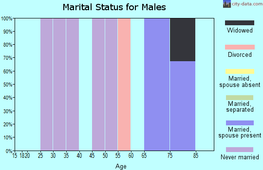 Zip code 98535 marital status for males
