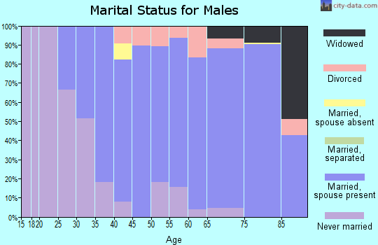 Zip code 98606 marital status for males