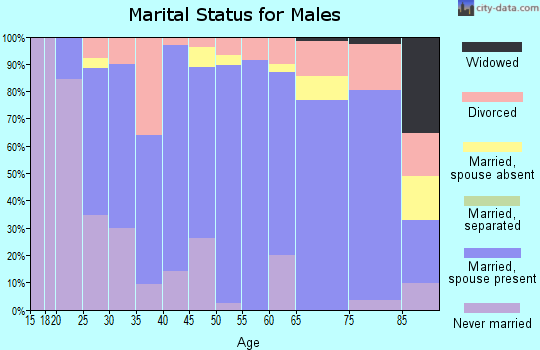 Zip code 98815 marital status for males