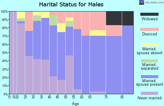 Zip code 98840 marital status for males