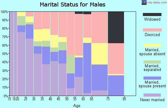 Zip code 99001 marital status for males