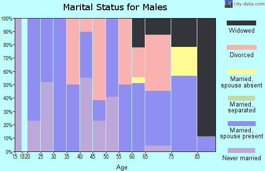 Zip code 99033 marital status for males