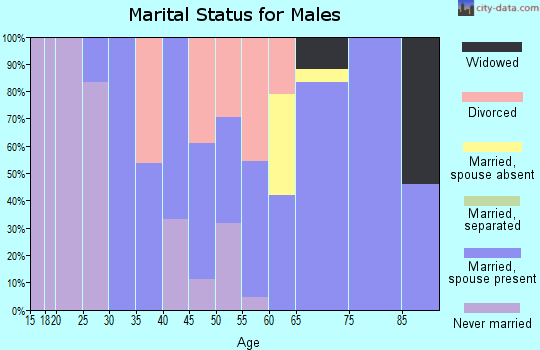 Zip code 99143 marital status for males