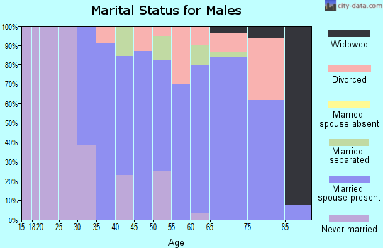 Zip code 99148 marital status for males