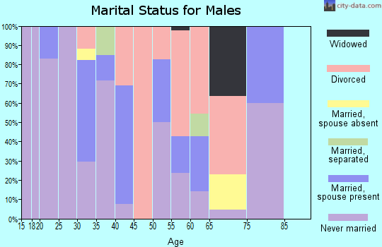 Zip code 99155 marital status for males