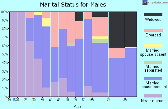 Zip code 99156 marital status for males
