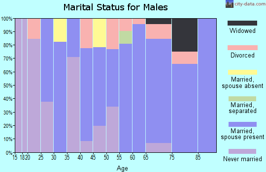 Zip code 99170 marital status for males