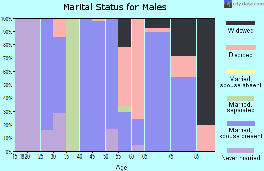 Zip code 99173 marital status for males