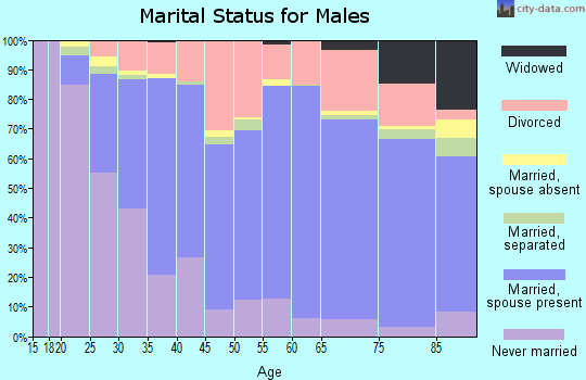Zip code 99206 marital status for males