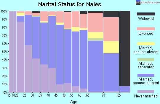 Zip code 99507 marital status for males