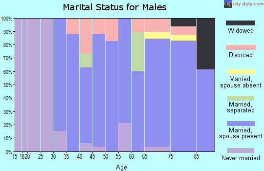 Zip code 99672 marital status for males