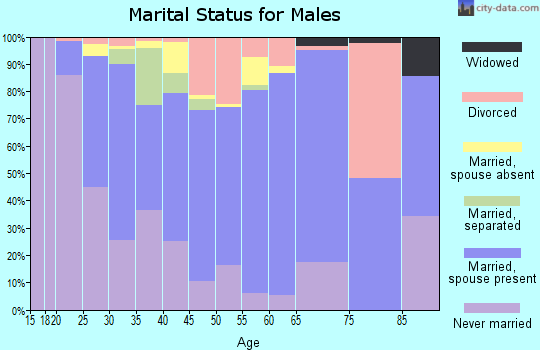 Zip code 99705 marital status for males