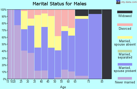 Zip code 99737 marital status for males